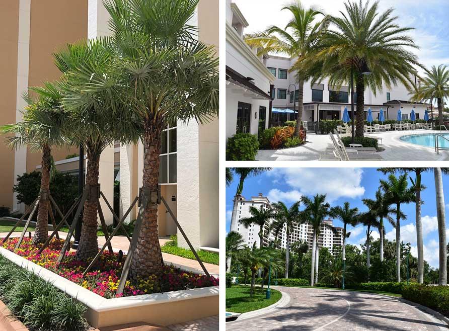 Landscape design for HOAs, Condominiums and Commercial Properties | Southwest Florida Landscape Design and Maintenance